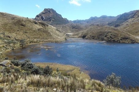 Cajas National Park Day-Trip including Lunch