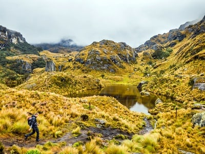 Cajas National Park - Private Tour