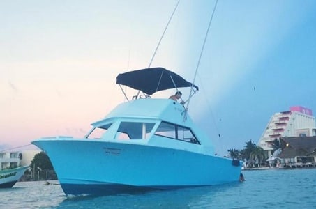 Mixed Trip Fish and Snorkel PRIVATE VIP TOUR 1 to 6 PEOPLE