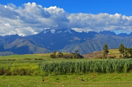 5-Day Unique Cusco Sacred Valley and Machu Picchu