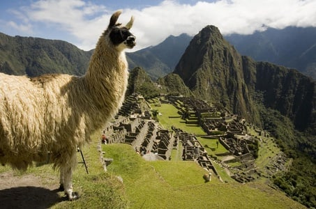 Machu Picchu Private Guided Tour from Aguas Calientes