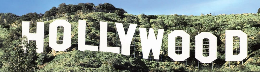 Los Angeles: Celebrity Homes and Beaches City Tour