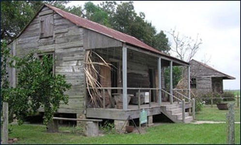 Cajun Culture: Boat Ride, Lunch, and Plantations Tour