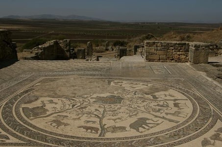 Meknès and Roman Ruins of Volubilis Day Trip from Fez