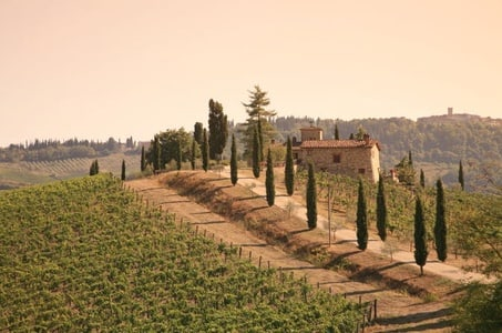 Chianti Half-Day Trip with Traditional Tuscan Dinner and Wine Pairings from Florence