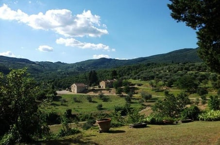 Chianti Half-Day Wine Tour from Florence