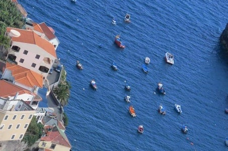 Private Half-Day Morning 4x4 Tour from Funchal
