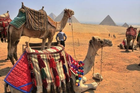 Shore Excursion: Day Trip from the Port of Alexandria to Cairo