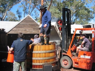 Barossa via Adelaide Hills Intimate Wineries Tour