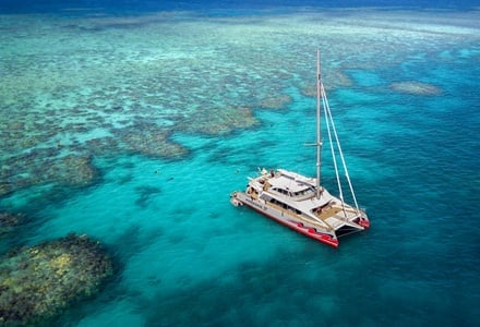 From Cairns: Great Barrier Reef 1-Day Snorkeling Trip