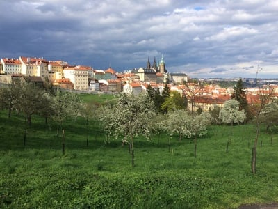 Visite de la ville aux 10 attractions: Prague