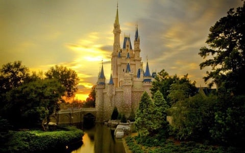 Disneyland or DisneySea: 1-Day Ticket and Private Transfer