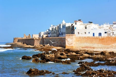From Marrakech: Private Day Trip to Essaouira