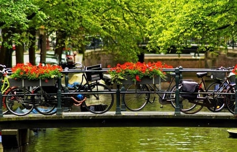Amsterdam: 2.5-Hour Private Walking Tour