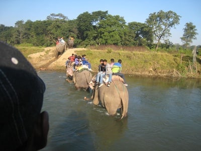 Chitwan National Park: 3-Day Safari