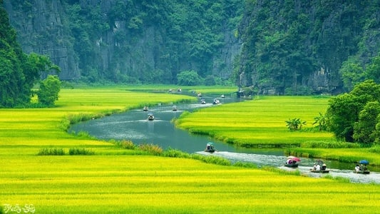 Hoa Lu & Tam Coc: Full-Day Tour with Buffet Lunch
