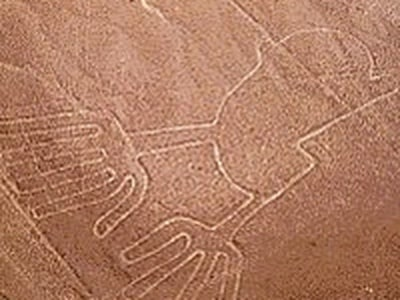 Nazca Lines Flight and Ballestas Islands Boat Tour from Lima