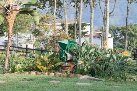Coffee Farm Experience from Medellin