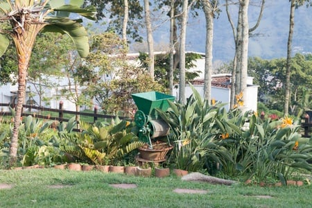 Coffee Farm Experience Medellin - Small Group Tour