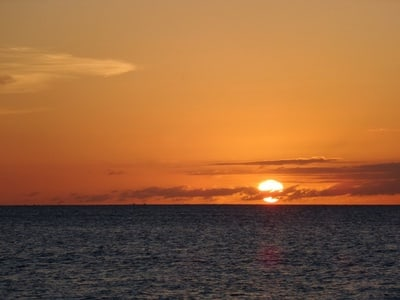 Glow Worm Tour And Sunset Cruise