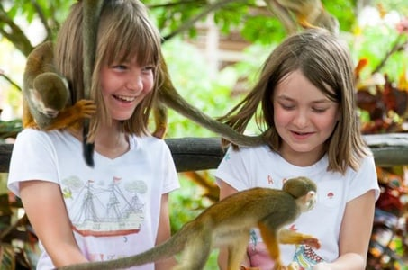 Safari Monkey Land from Punta Cana