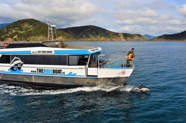 Marlborough Sounds Mail Boat Cruise Havelock