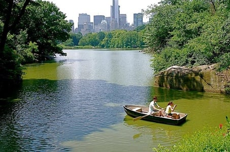 Private 2-Hour Central Park Walking Tour in NYC