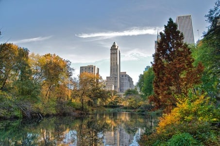Private Guided Walking Tour of Central Park