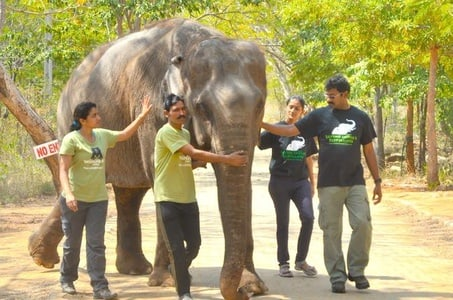Visit Asia Largest Bear Rescue Center and Elephant Rescue Center with Akbars tomb