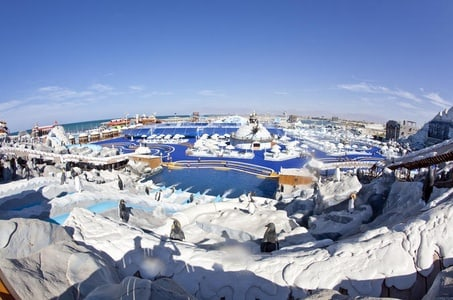 Full-Day Entrance Tickets to Ice Land Water Park in Ras Al Khaimah