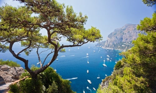 VIP Capri: full-day tour from Rome with Limoncello tasting Via High-Speed Train