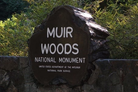 Private Tour: Muir Woods and Wine Country - 10 Hour
