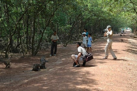 Sai Gon: Can Gio Biosphere Reserve and Monkey Island tour