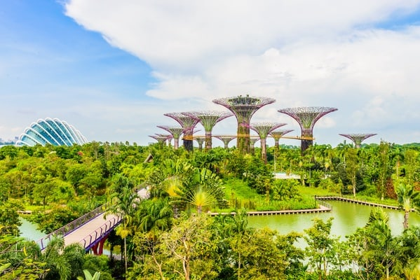 gardens by the bay flower dome and cloud forest marina bay sands skypark ticket