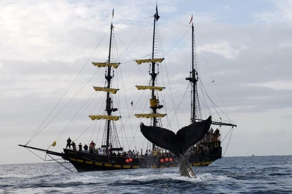Watching Pirate Ship Cruise In Los Cabos - Pirate ship cruise