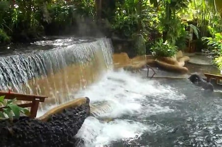 Private Tour to Arenal Volcano and Tabacon Hot Springs