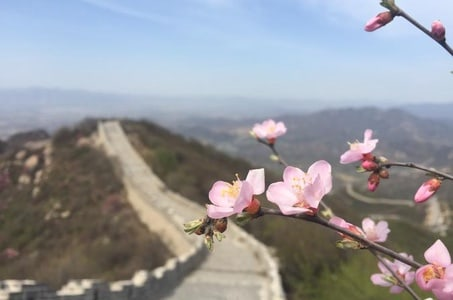 All Inclusive Private Hiking Tour to Yanqing Badaling Incomplete Great Wall