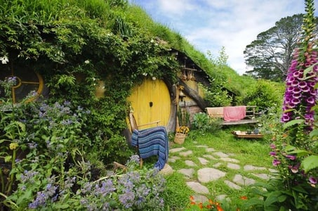 Tauranga Shore Excursion: Lord of the Rings Hobbiton Movie Set Tour