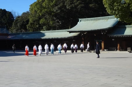 Private Half-day Walking Tokyo Culture Tour with Local Guide