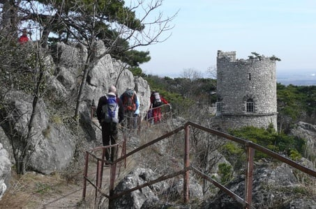2-Hour Small-Group Hiking Tour along Kalenderberg Mountain to Meet History from Vienna