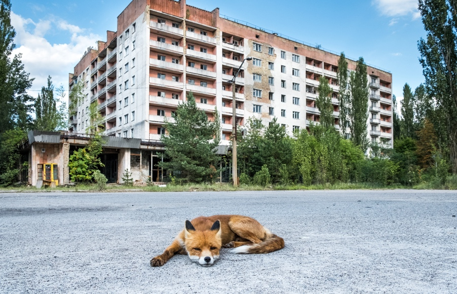 Abandoned buildings in Chernobyl